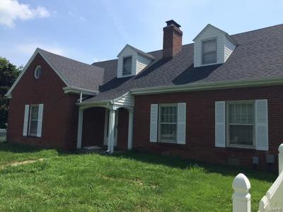 Scott County, Cape Girardeau County, Bollinger County, Perry County Farm For Sale: 3720 Old Route V