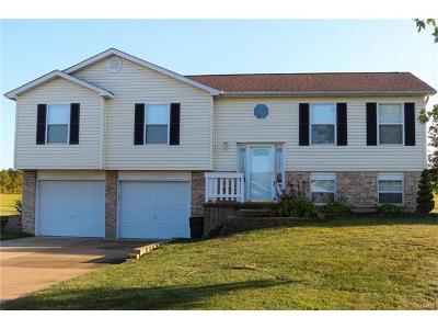 Catawissa, Robertsville Single Family Home For Sale: 316 Hayfield
