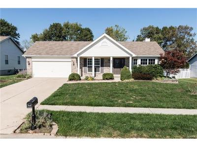 Wentzville Single Family Home For Sale: 421 Stone Park Drive