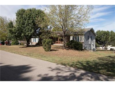 Desloge Single Family Home For Sale: 309 Sycamore