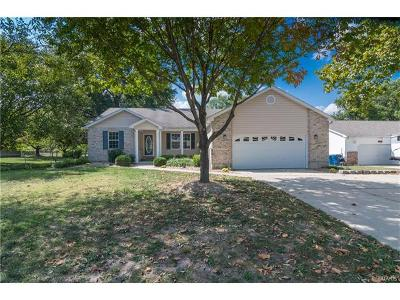 Edwardsville Single Family Home For Sale: 564 Clover Drive