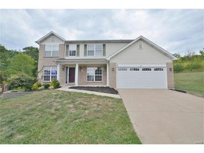 Fenton Single Family Home For Sale: 107 Keystone
