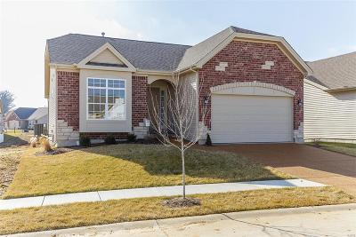 Franklin County Single Family Home For Sale: 8 Rabbit Trail Drive