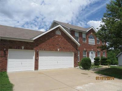 Ellisville Single Family Home For Sale: 16281 Autumn View Terrace