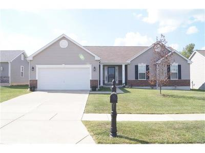 Wentzville Single Family Home For Sale: 143 Shadow Pointe Drive