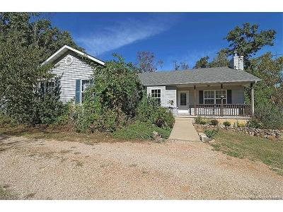 Bonne Terre Single Family Home For Sale: 10472 Edgewood Drive