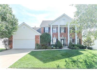 Wentzville Single Family Home For Sale: 2056 Hannah Drive