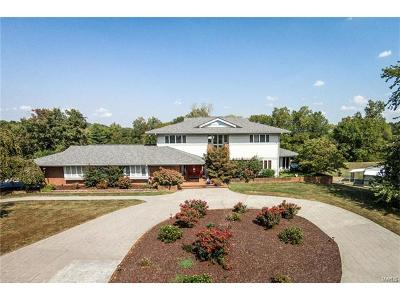 Single Family Home For Sale: 6100 Bohleysville Road