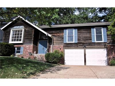 Ballwin Single Family Home For Sale: 1619 Forestview Ridge Lane