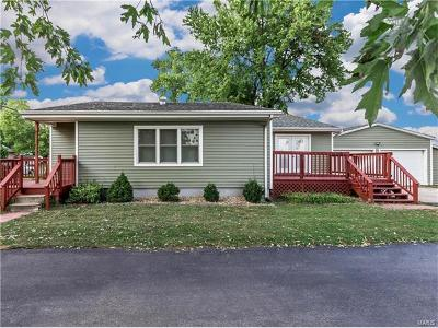 Edwardsville Single Family Home For Sale: 3114 Sand Road
