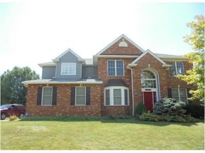 Fairview Heights Single Family Home For Sale: 1182 Stonewolf