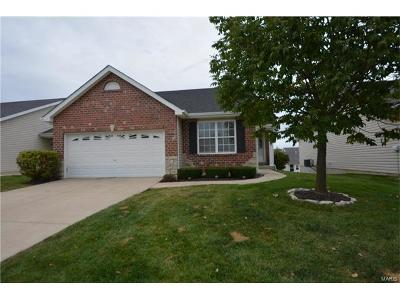 Wentzville Single Family Home For Sale: 339 Stone Village Drive
