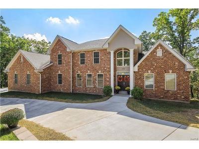 Fenton Single Family Home For Sale: 150 Sugar Mountain Drive