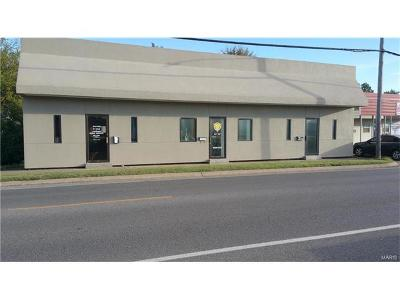 Scott County, Cape Girardeau County, Bollinger County, Perry County Commercial For Sale: 804 Main Street