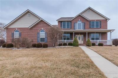 Swansea Single Family Home For Sale: 4172 Red Field