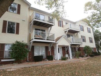 Hannibal MO Condo/Townhouse For Sale: $78,000
