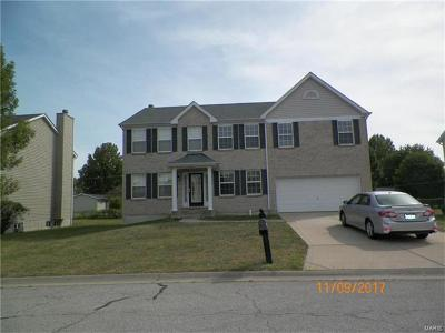Fairview Heights Single Family Home For Sale: 232 Americana