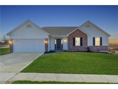 Wentzville Single Family Home For Sale: Anna - Stone Ridge Canyon