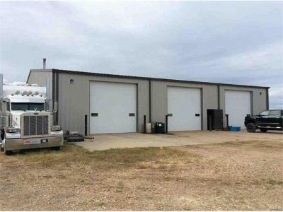 Scott County, Cape Girardeau County, Bollinger County, Perry County Commercial For Sale: Rr 1 Box 510, Hwy 51