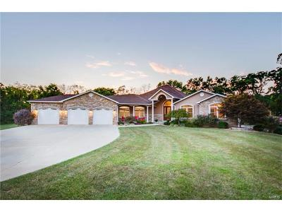 Brighton Single Family Home For Sale: 31508 Mitchell Creek