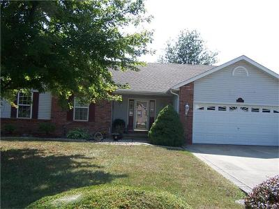 Jerseyville Single Family Home For Sale: 219 Michael Place