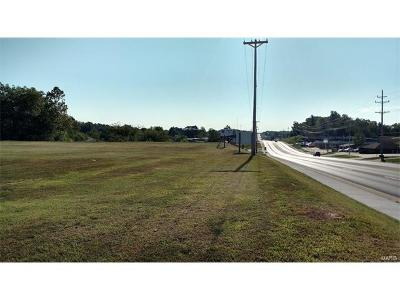 Scott County, Cape Girardeau County, Bollinger County, Perry County Commercial For Sale: 2502 East Jackson Boulevard