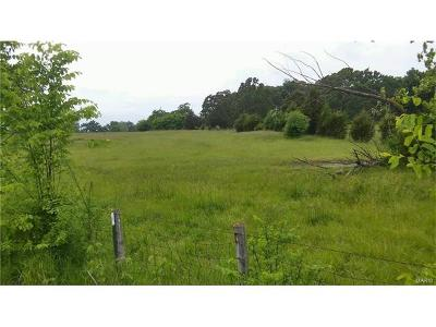 Jefferson County, Madison County, St Francois County Commercial For Sale: 1 Liberty