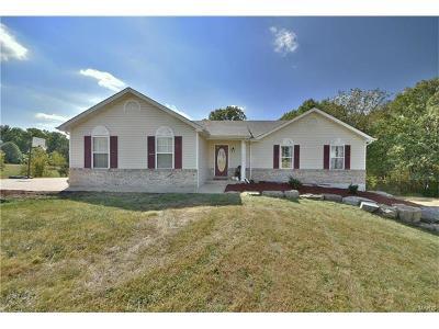 Warrenton Single Family Home For Sale: 20256 Oak Ridge