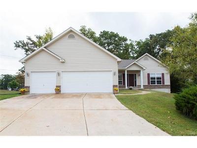 Wentzville Single Family Home For Sale: 206 Little Flower Court