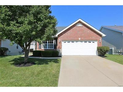 Wentzville Single Family Home For Sale: 239 Stone Run Boulevard
