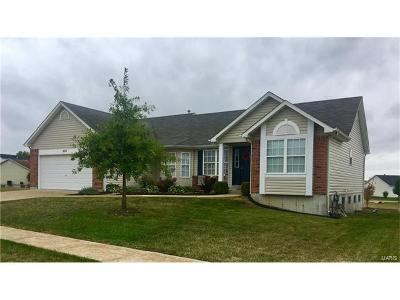 Wentzville Single Family Home For Sale: 222 Brookstone Creek Drive