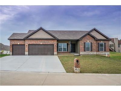 Franklin County Single Family Home For Sale: 15 Mason Close Road