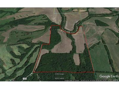 Marion County, Monroe County, Ralls County, Shelby County, Knox County, Lewis County Farm For Sale: Shelby 185