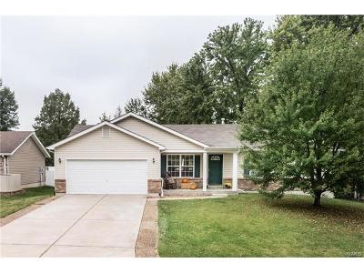 O'Fallon Single Family Home For Sale: 7 North Perry Drive