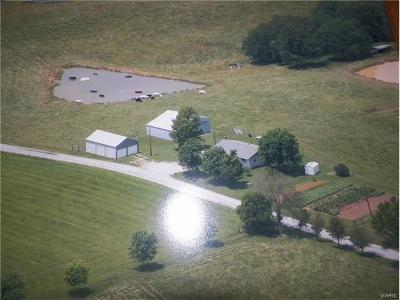 Scott County, Cape Girardeau County, Bollinger County, Perry County Farm For Sale: 221 Pcr 706