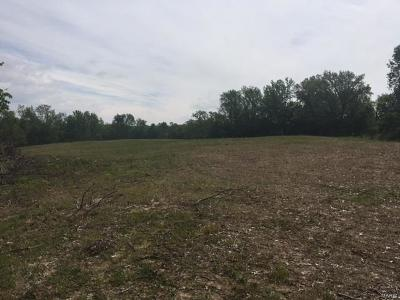 Scott County, Cape Girardeau County, Bollinger County, Perry County Farm For Sale: 238 County Rd 259