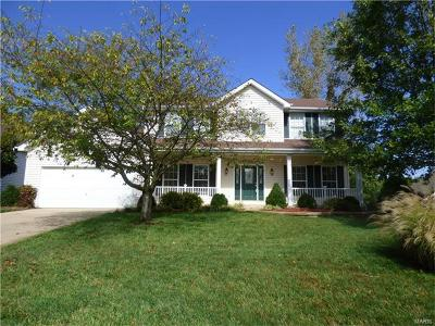 St Charles Single Family Home For Sale: 3912 Jacobs Landing