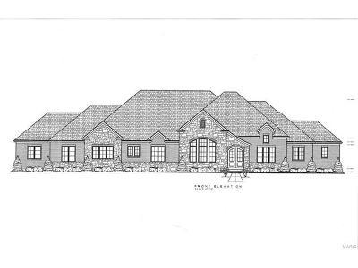 Single Family Home For Sale: 3017 Fallbrook Drive