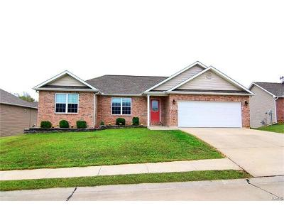 Cape Girardeau County Single Family Home For Sale: 1615 Columbia Drive