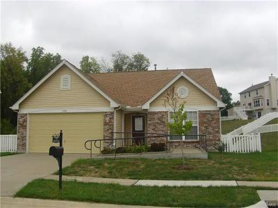 Single Family Home For Sale: 3350 Bridgeton Trails