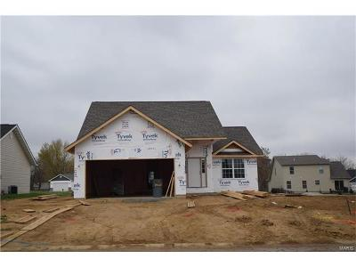 Caseyville New Construction For Sale: 7910 Laurel Flats