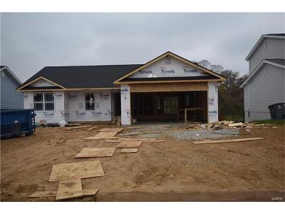 Caseyville New Construction For Sale: 7913 Laurel Flats