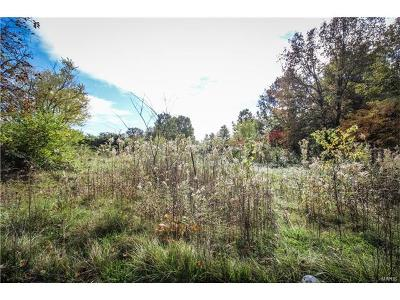 Residential Lots & Land For Sale: 11358 New Douglas Road
