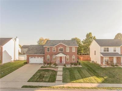 Edwardsville, Glen Carbon, Maryville, Troy, Collinsville, Caseyville, Fairview Heights, O'fallon, Belleview Single Family Home For Sale: 709 Donna Drive