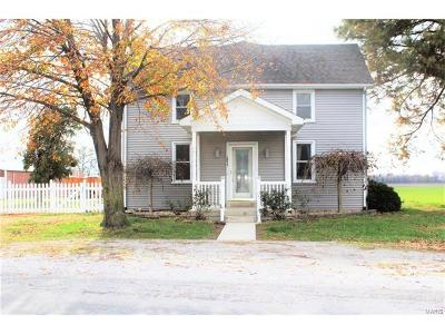 Valmeyer Single Family Home For Sale: 2073 Outlet Road