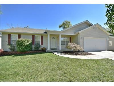 Edwardsville, Glen Carbon, Maryville, Troy, Collinsville, Caseyville, Fairview Heights, O'fallon, Belleview Single Family Home For Sale: 18 South Lang Drive