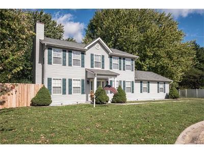 Belleville Single Family Home For Sale: 1405 Loop Creek Court