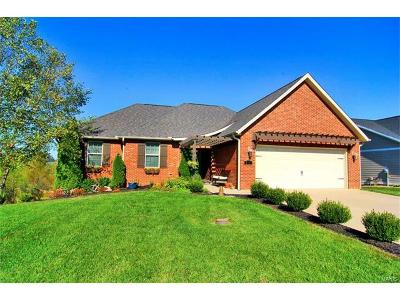 Scott County, Cape Girardeau County, Bollinger County, Perry County Single Family Home For Sale: 570 Cloverdale Ranch Road