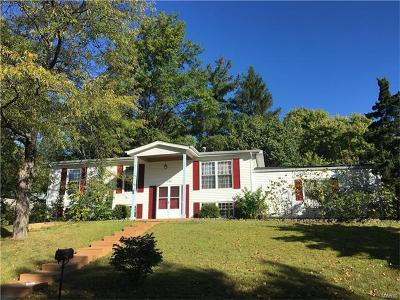 Manchester Single Family Home For Sale: 703 Valley View