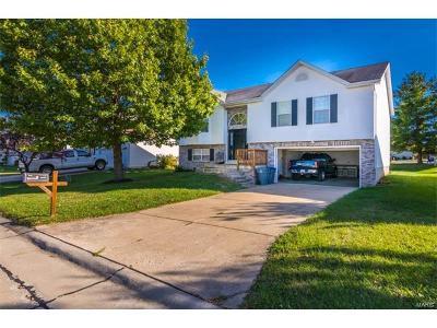 O'Fallon Single Family Home For Sale: 238 Sarah